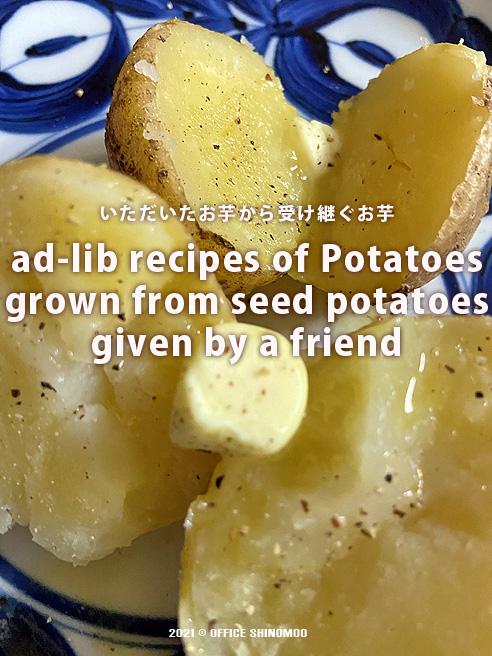 オフィスしのも ランチ アドリブレシピ 種芋 ジャガイモ 半径5メートル 夏野菜カレー ペスト ジェノベーゼ
