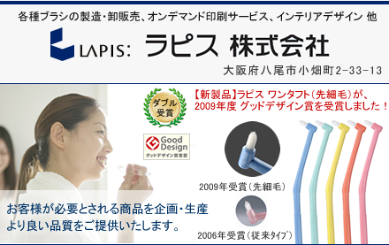 ラピス株式会社