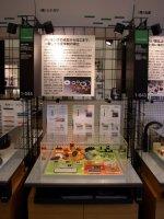 クリエイション・コア東大阪内 常設展示場シナガワブース